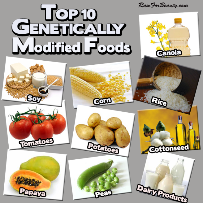 top_ten_genetically_modified_foods