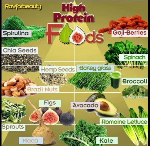 Which Vegetables Contain Protein Protein protein protein vitamin katie protein in plants workwithnaturefo